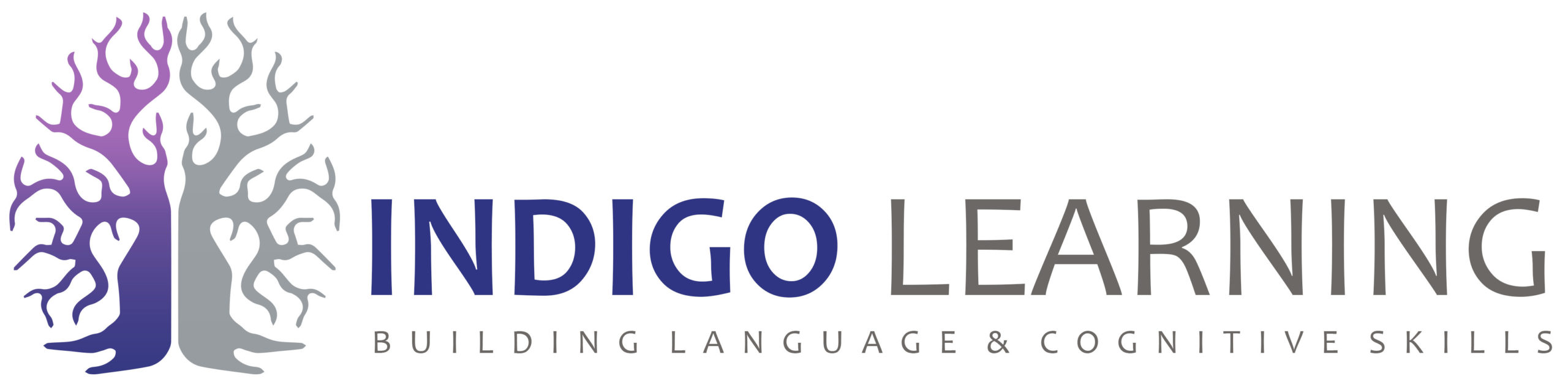 INDIGO LEARNING
